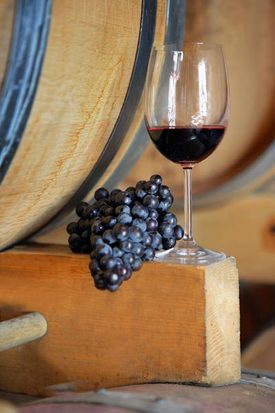 producción de vino en La Mancha